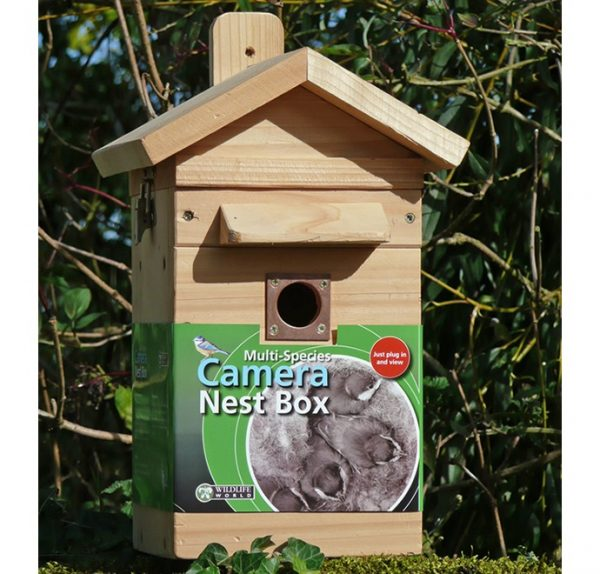 Colour Camera Nest Box