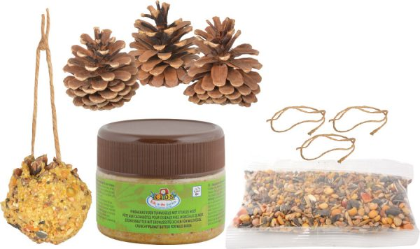 DIY Bird Food Pinecone