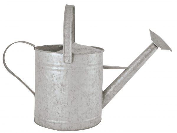 Fallen Fruits Old Zinc Watering Can (3.6Lt)