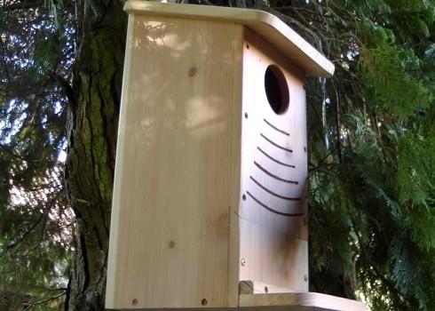Wildlife World Red Squirrel Nest Box