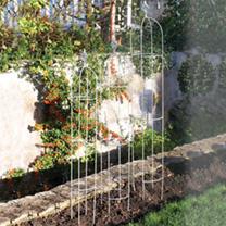Small Elegance Obelisk Sage Green