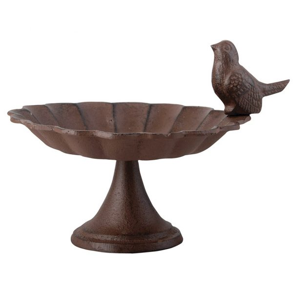 Bird bath with bird