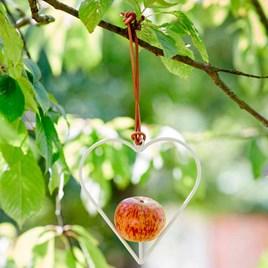 Heart-Shaped Apple Bird Feeder