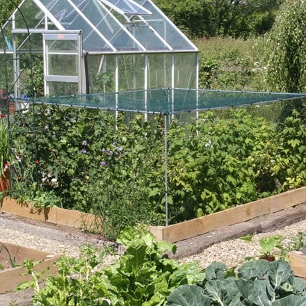 Fruit cage starter kit