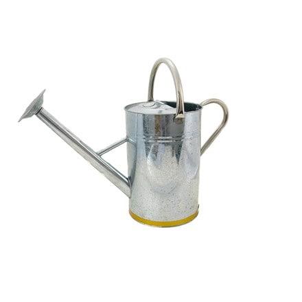 Metal watering can - gold trim