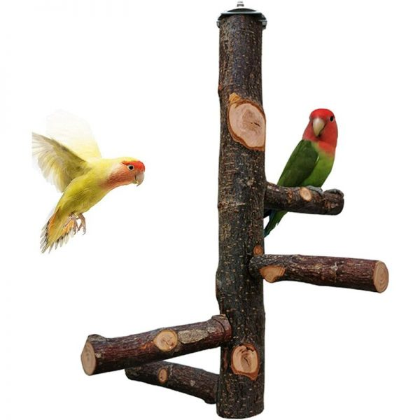 Bird Perch Natural Fruit Wood Stand Toy Branch Paw Grinding Standing Climbing Toy Cage Accessories for Small and Medium