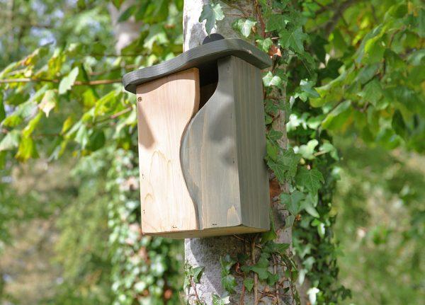 Curve Cavity Bird Nest Box